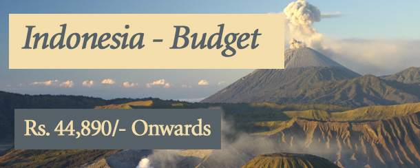 Indonesia - Budget