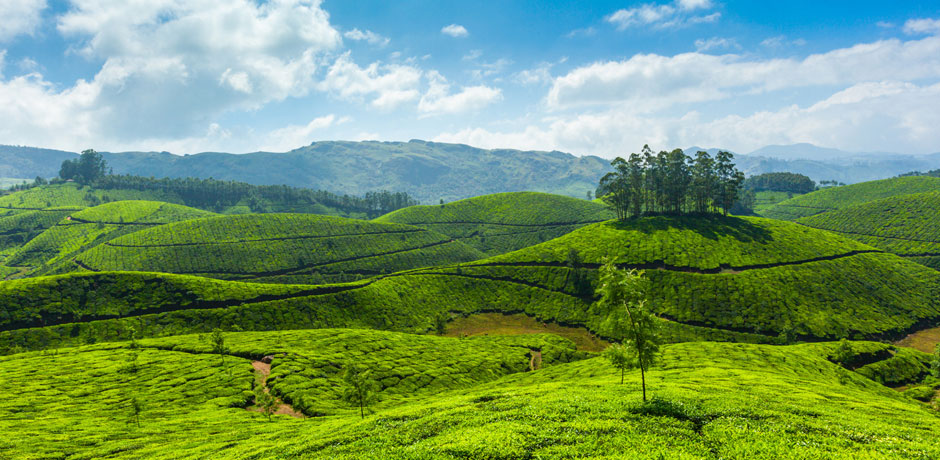 Luxury Kerala